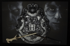 harry vs voldy 5